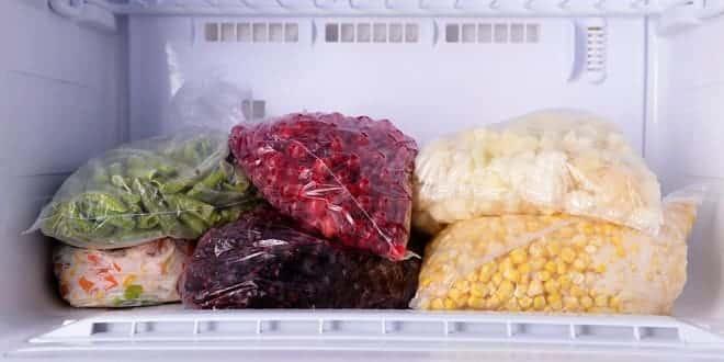 Foodelphi.com dondurulmuş gıda dondurma işlemi