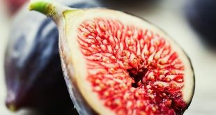 incir-fig