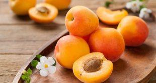 Foodelphi.com kayısı apricot